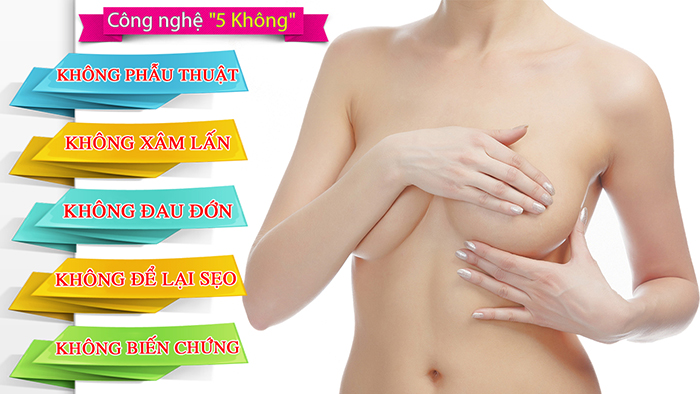 lam-hong-nhu-hoa