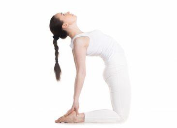 Vòng 1 c?ng tròn v?i 6 ??ng tác Yoga m?i ngày